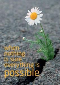 Als niets vast staat is alles mogelijk
