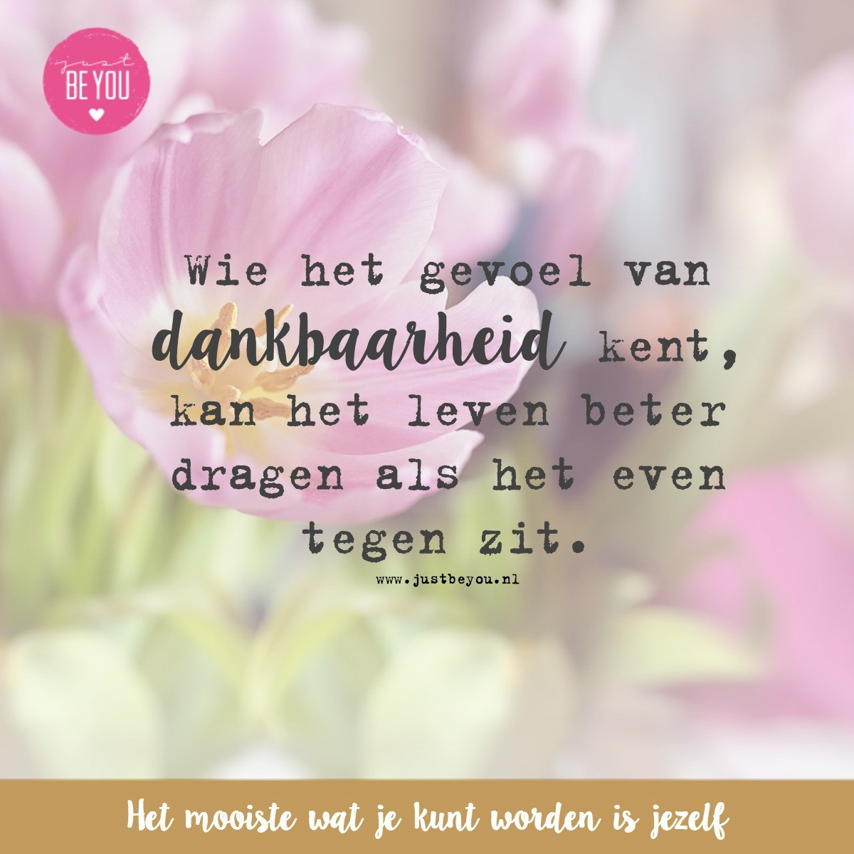 Bekende Citaten Over Dankbaarheid : Dankbaarheid just be you