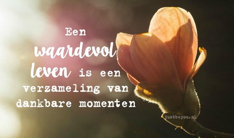 Gedachten en mooie momenten: Een waardevol leven is een verzameling van dankbare momenten