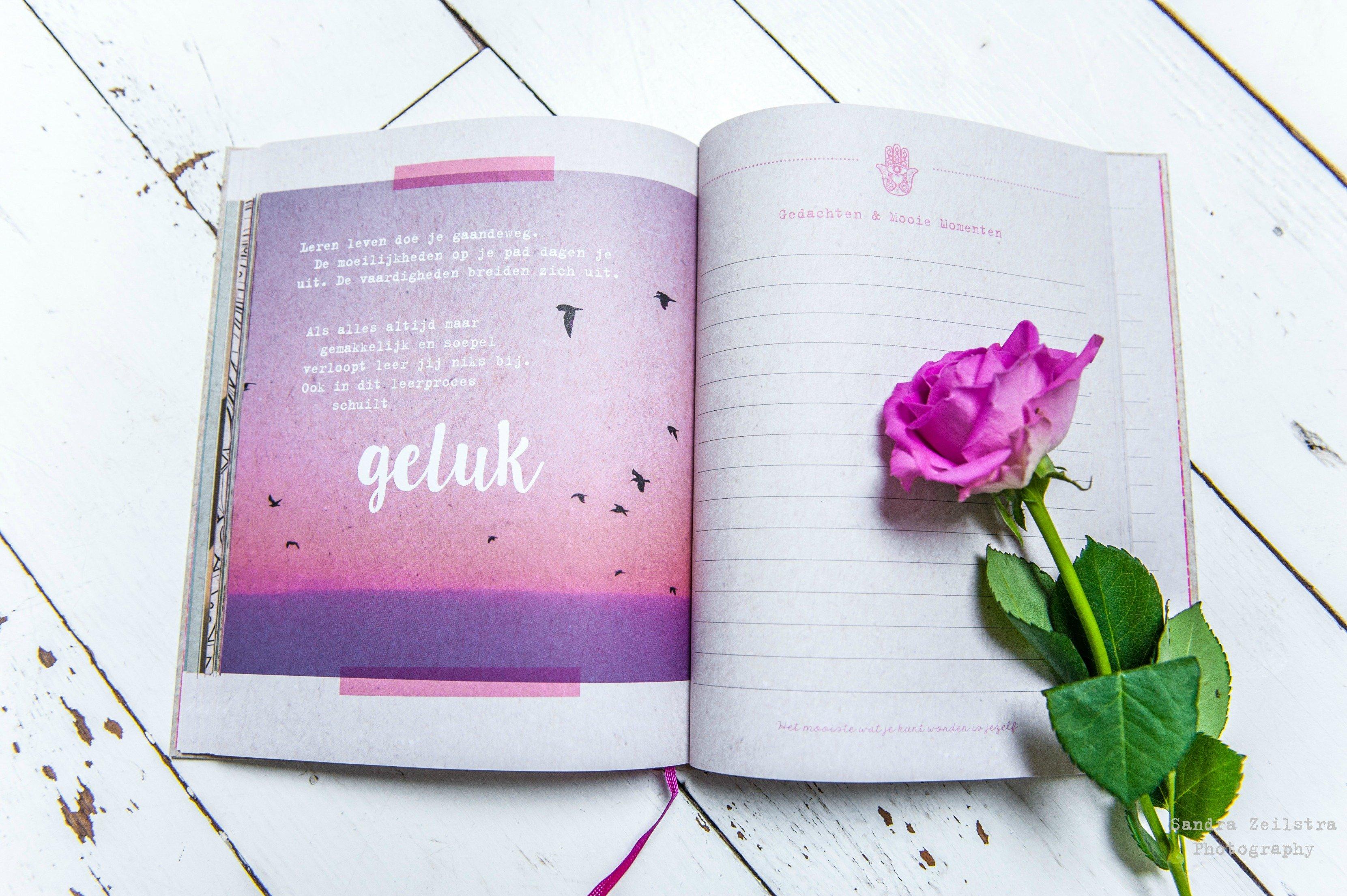 Boek Gedachten en Mooie Momenten