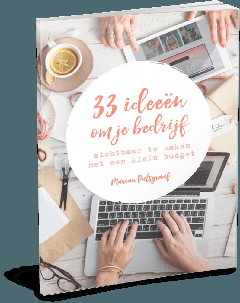 Cover 33 ideeen om je bedrijf