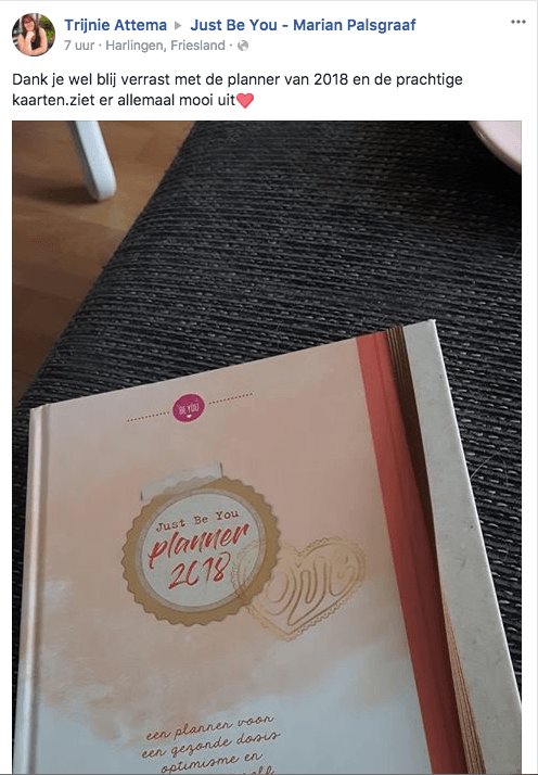 Review Just Be You Planner 2018