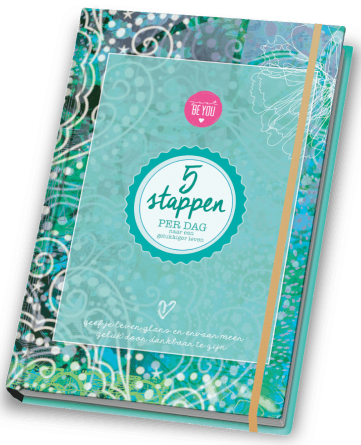 Cover 5 stappen Just Be You II