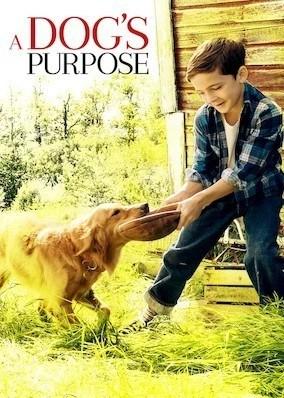 9 tips voor een filmavond - A Dog's Purpose