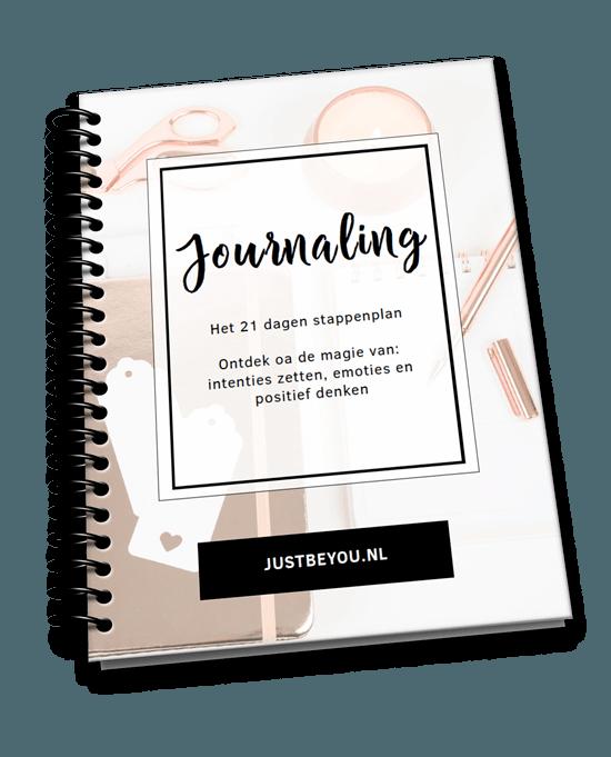 Werkboek Dagboek (journaling) schrijven