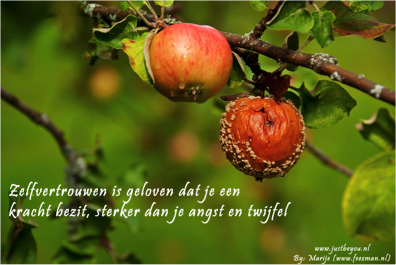Citaten Angst Ff : Inspirerende quote just be you